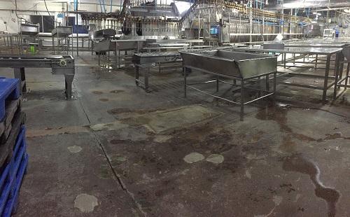 Piso concreto deteriorado planta de alimentos